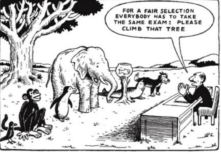 Informal vs. Formal Assessments: Tests are not the only end-all-be-all ...